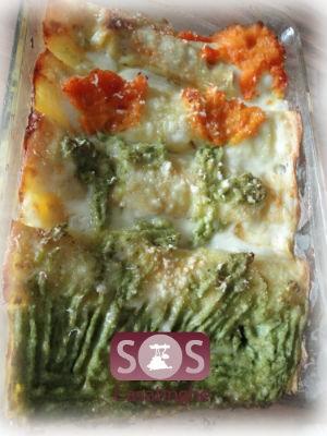 Ricetta cannelloni con disegno di verdure al ragù